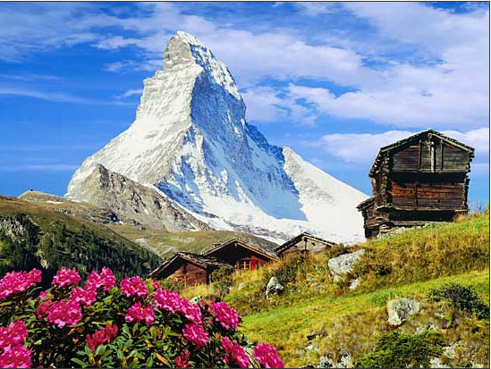 Stellen Swiss