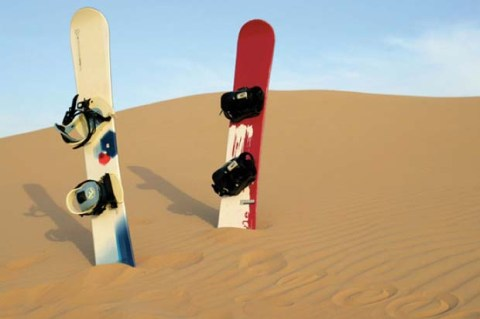 Have you ever gone sand boarding? It's an option in Abu Dhabi