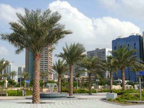 Well manicured park in Abu Dhabi
