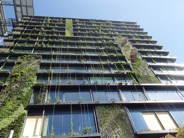 This building was really great with the greenery climbing up it!