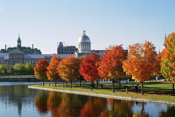 800px-Marché_Bonsecours_and_Foliage