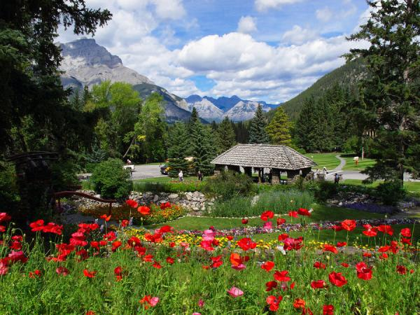 Banff Gardens, Alberta, Canada